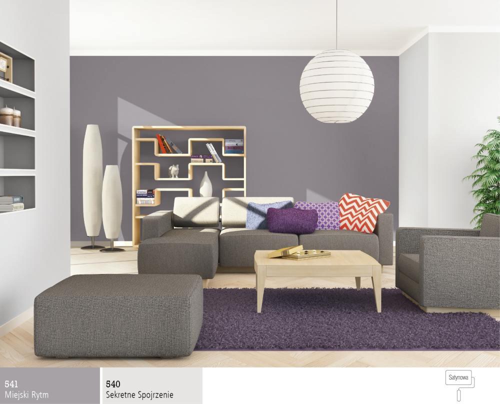The interior living room in gray  Śnieżka farby, lakiery   -> Kolor Kuchni Do Jasnych Mebli
