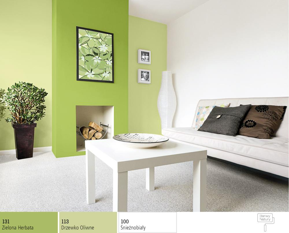 How to match paint colours reasonably to our walls   -> Sniezka Kuchnia Lazienka Kolory